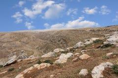 Горы пустыня Негев каньона в Израиле Стоковое фото RF
