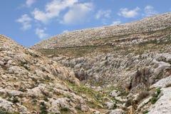 Горы пустыня Негев каньона в Израиле Стоковая Фотография RF