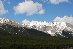 горы пущ Стоковая Фотография