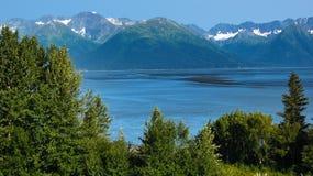 горы рукоятки над turnagain лета Стоковое фото RF
