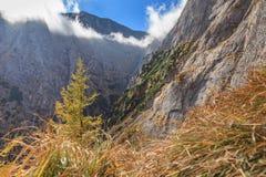 горы Румыния bucegi Стоковая Фотография