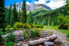 Горы Сан-Хуана заводи Silverton Колорадо южные минеральные Стоковые Фото