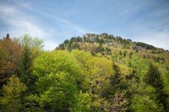 горы северные США Каролины Стоковое Изображение