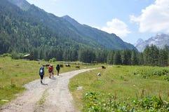 горы скита kakheti caucasus Georgia alaverdi Стоковое Изображение