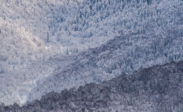 горы снежные Стоковая Фотография RF