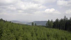 Горы сыча Witcher в Польше Стоковые Изображения