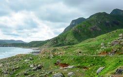 Горы с морем в жулике Dao, Вьетнаме стоковое изображение rf