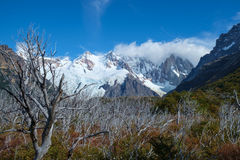Горы с озером в Патагонии Стоковое Фото