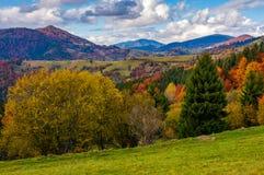 Горы с сельской местностью леса осенней Стоковое Изображение RF