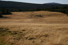 Горы, луга, лето Стоковые Изображения RF