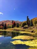 Горы Уосата скалистые на яркий день падения с прудом и водорослями на переднем плане и деревьями поворачивая цвета осени в backgr Стоковые Изображения