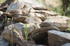 Горы утеса Стоковая Фотография RF