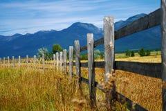 горы утесистые Стоковое Фото