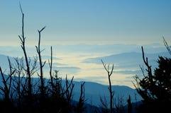 горы утра тумана закоптелые Стоковые Изображения