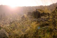 горы утра Стоковая Фотография