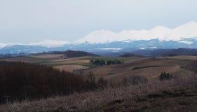 Горы Хоккаидо снега Стоковая Фотография