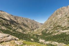 Горы любая сторона долины Restonica в Корсике стоковые изображения