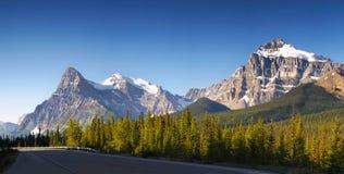 Горы яшмы Banff бульвара Icefield канадские скалистые Стоковая Фотография RF