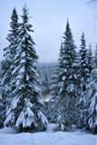 горы adirondaks Стоковое фото RF