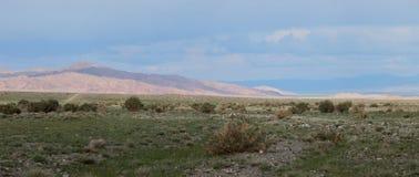 Горы Altai. Красивый ландшафт гористой местности Стоковые Изображения RF