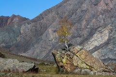 Горы Altai, республика Altai, Россия Природа Стоковое Изображение
