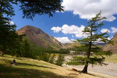 горы altai Стоковые Изображения RF