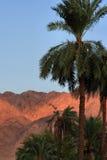 горы aqaba Иордана Стоковая Фотография