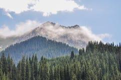 горы bayanaul Стоковое фото RF