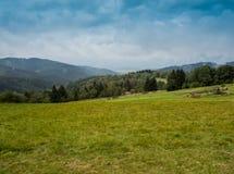 Горы Beskid Стоковые Фото