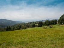 Горы Beskid Стоковая Фотография RF