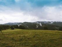 Горы Beskid Стоковое Фото