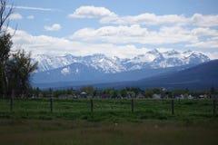 Горы Bitterroot около Гамильтона, Монтаны стоковые изображения rf
