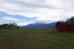 Горы Bitterroot около Гамильтона, Монтаны стоковое изображение