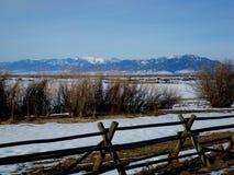 Горы Bridger, Bozeman, Монтана Стоковое Изображение RF