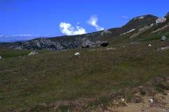 Горы Bucegi группы Стоковые Изображения