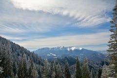 Горы Bucegi увиденные от Poiana Brasov, Румынии Стоковое Изображение RF