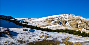 горы bucegi Стоковые Фото