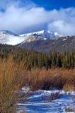 горы colorado снежные стоковые изображения rf