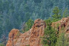 горы colorado утесистые Стоковое Изображение