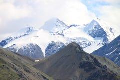 горы denali Стоковое Изображение