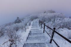 Горы Deogyusan покрыты снегом стоковое изображение rf