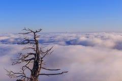 Горы Deogyusan стоковые изображения