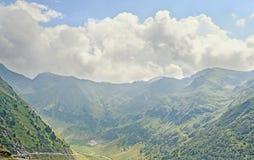 Горы Fagaras, Карпаты с зеленой травой и сосновыми лесами Стоковое Изображение RF