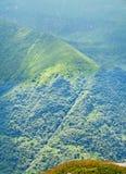 Горы Fagaras, Карпаты с зеленой травой и сосновыми лесами Стоковая Фотография