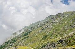 Горы Fagaras, Карпаты с зеленой травой и утесами, пиками Стоковые Изображения RF