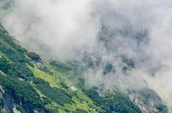 Горы Fagaras, Карпаты с зеленой травой и утесами, пиками Стоковое Изображение RF