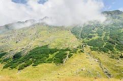Горы Fagaras, Карпаты с зеленой травой и утесами, пиками Стоковые Фото