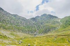 Горы Fagaras, Карпаты с зеленой травой и утесами, Trans Стоковые Фотографии RF