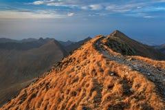 Горы Fagaras, южное Карпат Стоковая Фотография