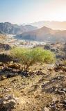 Горы Hajar Al Фуджейры стоковые изображения